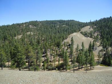 Clear Creek Management Area