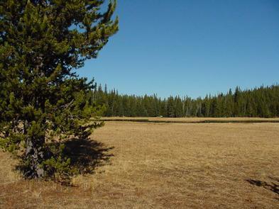 Mud Lake Campground | Recreation gov