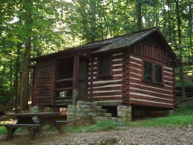 American chestnut log cabin, picnic table and fire ring surrounded by deciduous treesCamp Misty Mount Cabin 18. American chestnut cabin accommodates 4 people and includes interior and exterior lighting, outdoor picnic table and fire circle/grill.
