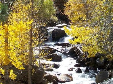 Fall colors along Big Pine Creek