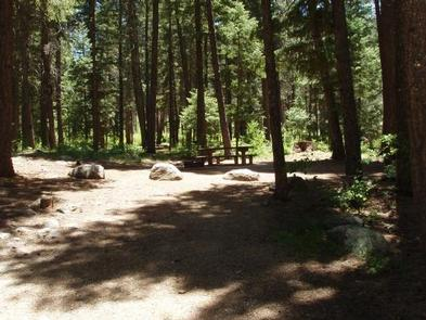 PINE POINT CAMPGROUND