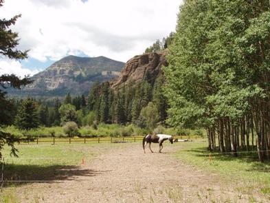 PALISADES HORSE CAMP
