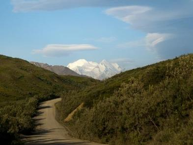 A view of a dirt road curving around a corner to the right with green hills on each side and the view of Denali in the distance.DENALI NATIONAL PARK - ROAD LOTTERY