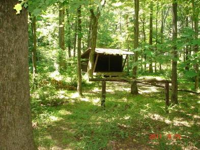 3-sided wooden Adirondack shelter surrounded by trees in the summer.Enjoy backcountry summer camping in a secluded area of the park.