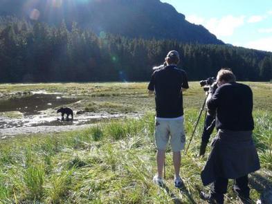 PACK CREEK BEAR VIEWING AREA
