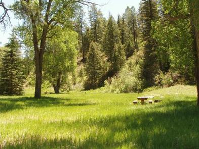 Preview photo of Blanco River Group Campground