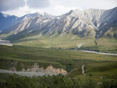 A green valley with a braided river cutting across it lined with larger peaksDENALI NATIONAL PARK - ROAD LOTTERY