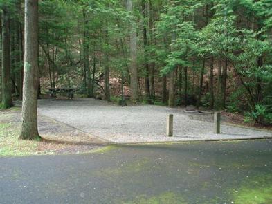 Hurricane Campground  5Campsite in Hurricane Campground