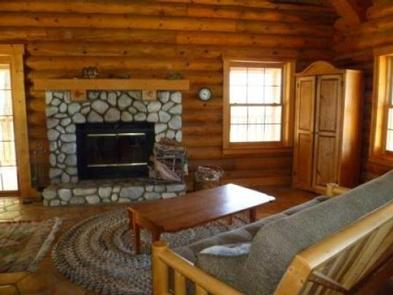 View of the Hillside Cabin's living room with stone fireplace and futon, and cabinent.Hillside cabin's living room.