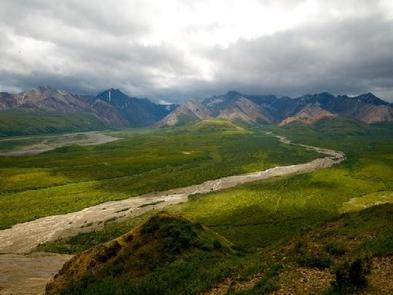 A sweeping landscape view of green hills, a braided river, and darker mountains in the distance.DENALI NATIONAL PARK - ROAD LOTTERY