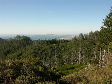 Point Reyes National Seashore Campground