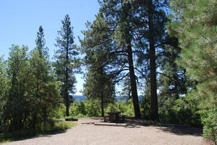 TARGET TREE CAMPGROUND