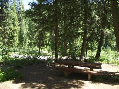 Preview photo of Bad Bear Campground