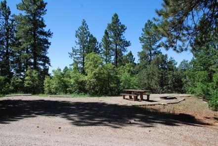 Preview photo of Target Tree Campground