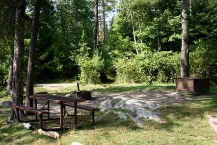 View of a grassy campsite surrounded by trees with a picnic table, fire ring, and bear-proof metal food locker.Campsites in Voyageurs National Park include fire rings, picnic tables, privy and food storage lockers. Some campsites also have docks.