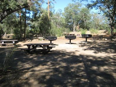 Shade, picnic tables & fire pits of the Oso Group Campground