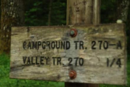 Blue Lake Creek Campground