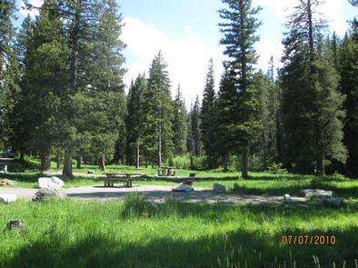 Langohr Campground - campsite surrounded by pine trees, picnic table & fire ringCampsite