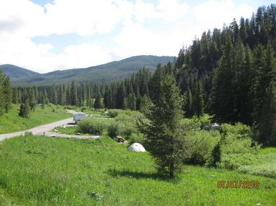 LANGOHR CAMPGROUND - campground road with pine trees & camperLangohr Campground