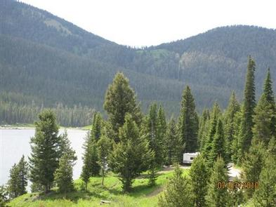 Pine trees, mountains & campsite with camperCampsite