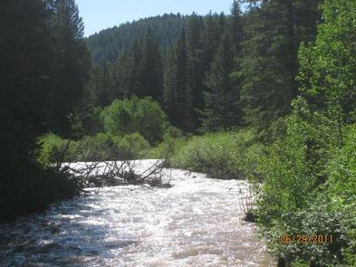 Storm Castle Creek surrounded by pine treesStorm Castle Creek