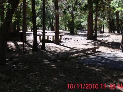 Preview photo of Mountain Oak