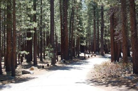 OLD SHADY REST CAMPGROUND