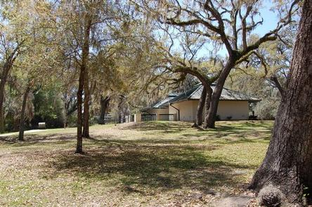 Preview photo of Salt Springs Recreation Area