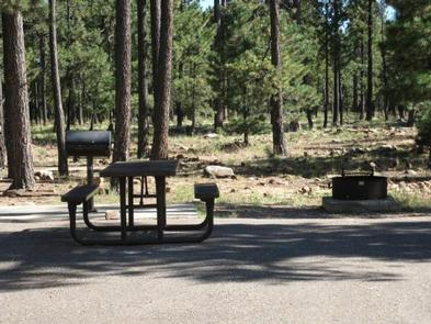 CROOK CAMPGROUND campsiteEach loop in Crook offers 13 individual spurs with tables, fire rings, and grills