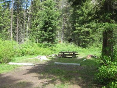 Campsite surrounded by pine trees,  picnic table & fire ringCampsite