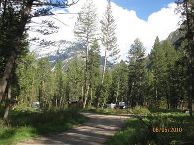 Pine Creek Campground - road through campground, pine trees and RV'sPine Creek Campground