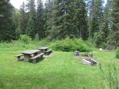 Group Area Site 12 - campsite surrounded by pine trees, picnic tables & fire ringGroup Area Site 12