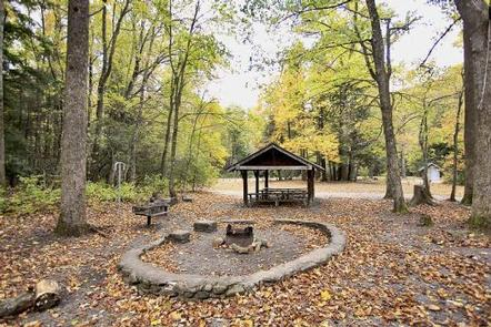 BRIAR BOTTOM GROUP CAMPGROUND 6Picnic area