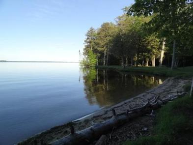 Brevoort Lake Campground | Recreation gov