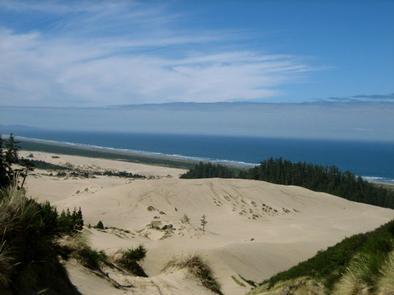 Preview photo of Umpqua Sand Camping