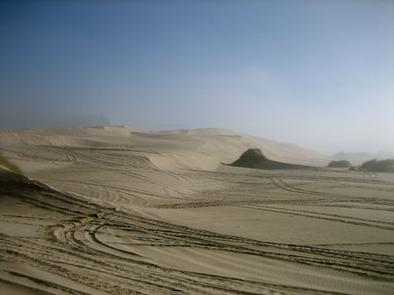 Sand dunes covered in OHV tracks, fog almost burned off.SOUTH JETTY SAND CAMPING