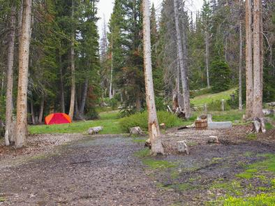 Lake Canyon Campground
