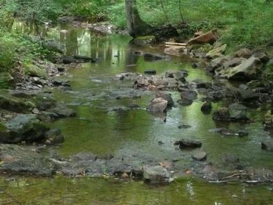 STONY FORK CABINNearby creek