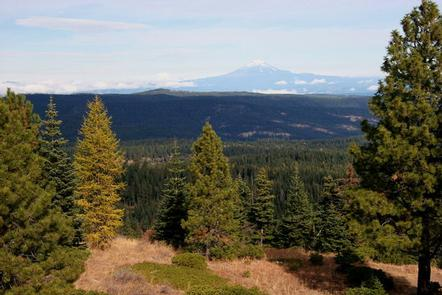 Preview photo of Fivemile Butte Lookout