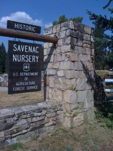 Savenac CookhouseSavenac entrance