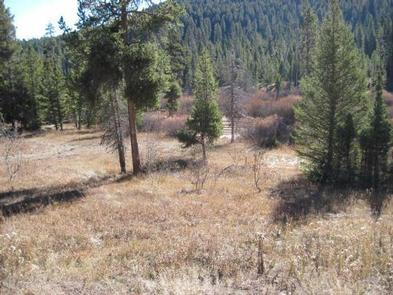 Preview photo of Steel Creek Group Campground