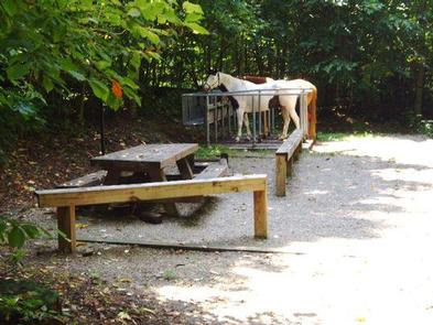 Preview photo of Harmon Den Horse Campground