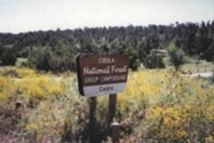 This is a picture of the recreation site signEntrance to Cedro Peak Group Campsites