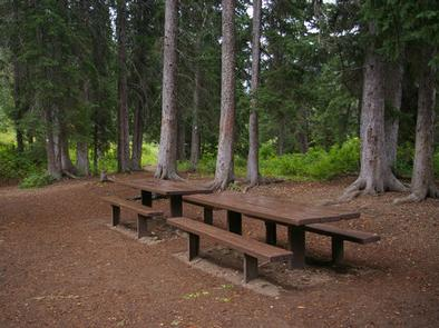 COTTONWOOD GROUP CAMPSITEpicnic tables