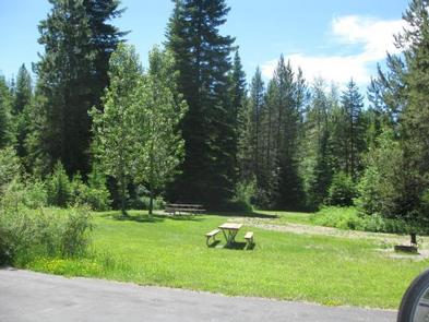 SWAN LAKE CAMPGROUND CampsiteTrees and picnic table