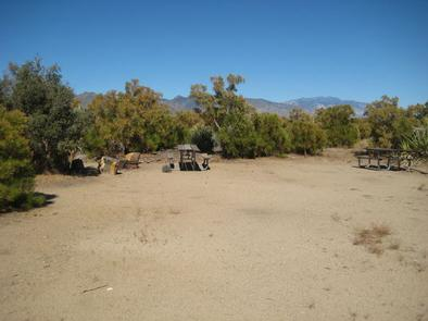 Ribbonwood Equestrian Campground Picnic Tables