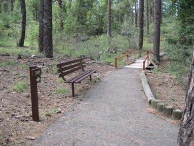 Lion's accessible paved interpretive trail bench and directional sign post leading to wooden bridge with rustic railing.Lion's Handicap Interpretation Trail