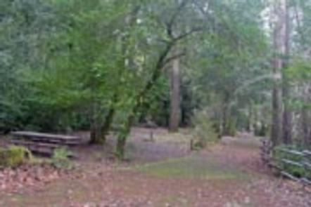 Pearch Creek Campground | Recreation gov
