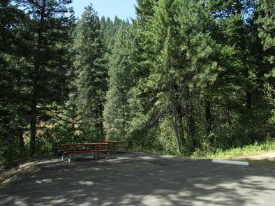 EVERGREEN CAMPGROUND SiteEvergreen Campground Site
