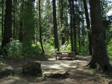 EVERGREEN CAMPGROUND - forested campsiteEvergreen Campsite